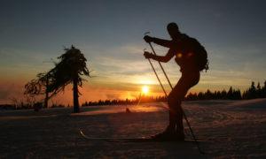 Běžkař v západu slunce Fotograf: Ondřej Littera